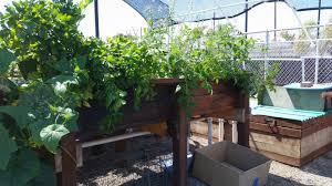 Aquaponics Coming to Parks