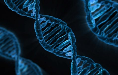 The Future of Genetic Technology and Engineering