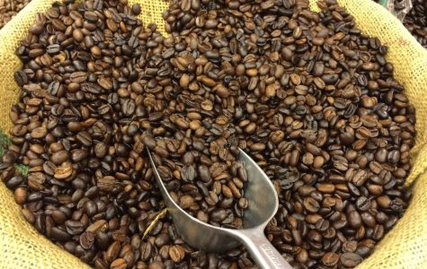 -Kopi Luwak- The most expensive coffee in the WORLD