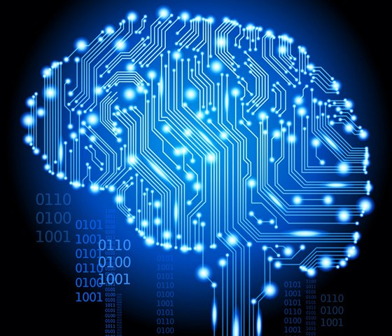 3 Interesting Facts About the Human Brain