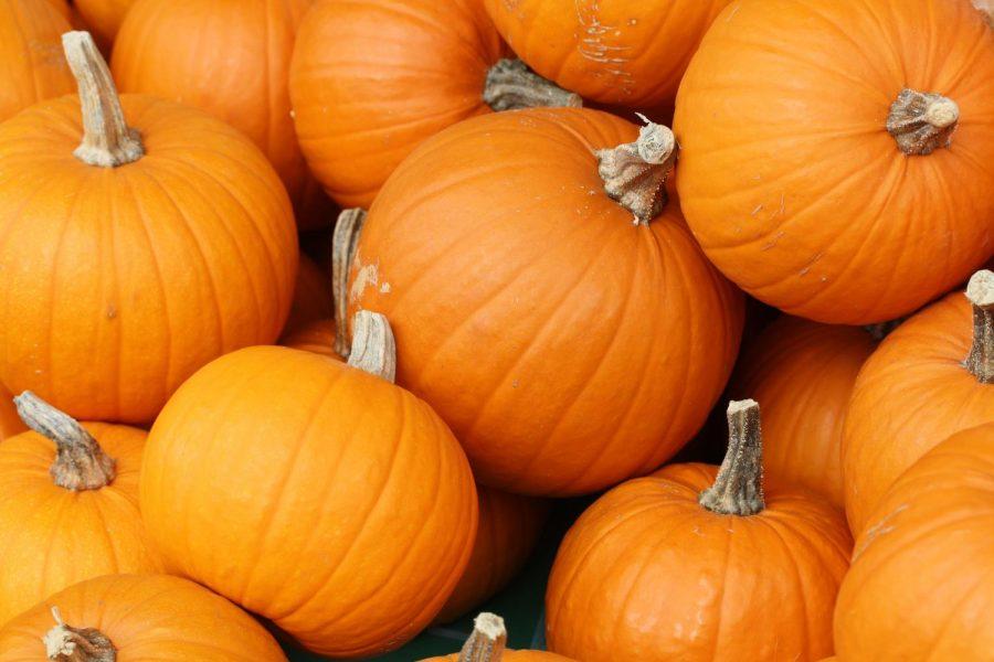 The Benefits of Pumpkins