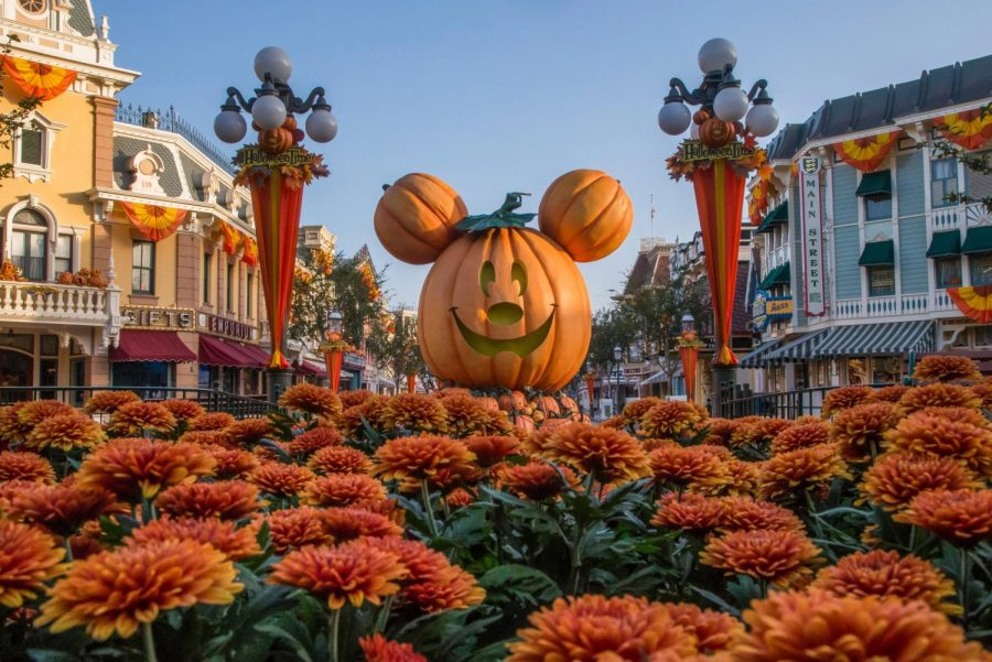 Halloween Time at Disneyland, Disneys California Adventure, and Star Wars: Galaxys Edge: What to do, see, and eat!