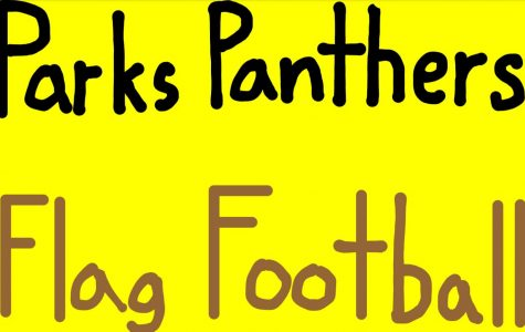 Heartbreaking Loss for the Panthers Football Team
