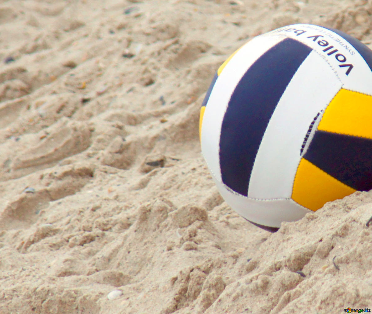 Free picture (Image for profile picture Beach Volleyball.) from https://torange.biz/fx/image-profile-picture-beach-volleyball-17696